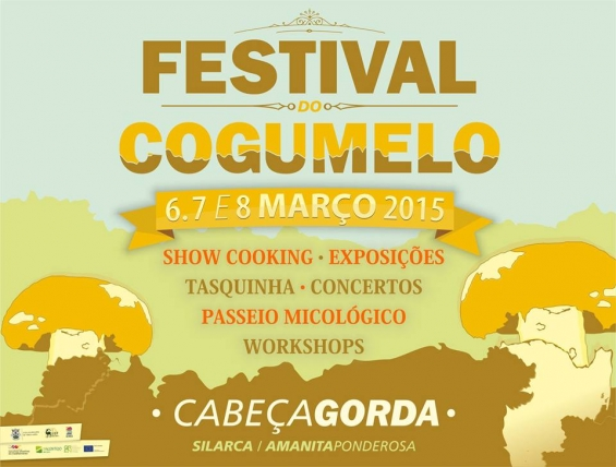 Festival do Cogumelo