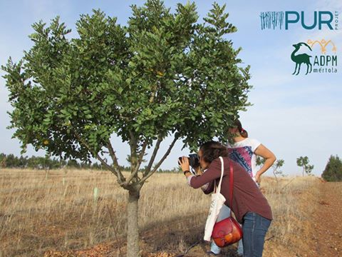 Agricultura para o Futuro - Programa ACCOR para Portugal