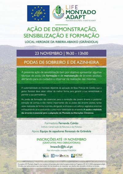 Estão abertas as inscrições para a ação de demonstração sobre podas de sobreiro e azinheira