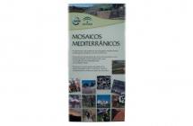Mosaicos Mediterrânicos