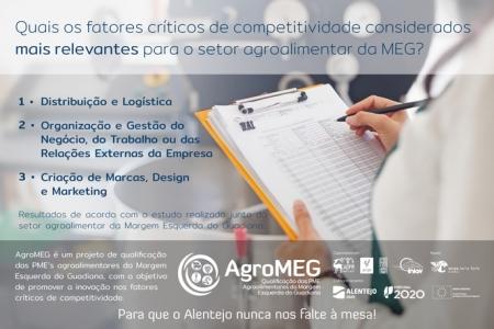 Quais os fatores críticos de competitividade considerados mais relevantes para o setor agroalimentar da MEG?