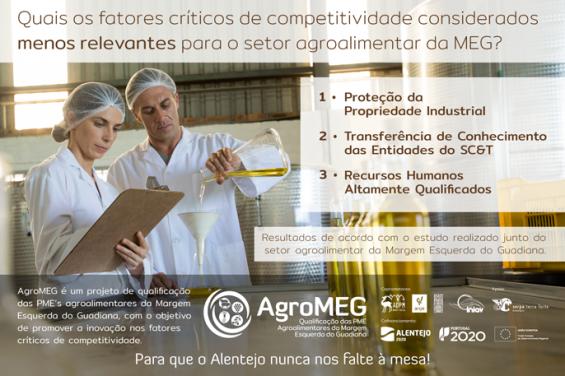 Quais os fatores críticos de competitividade considerados menos relevantes para o setor agroalimentar da MEG?