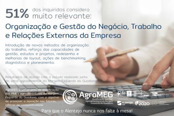 Fatores Críticos de Competitividade: Organização e Gestão do Negócio, Trabalho e Relações Externas da Empresa
