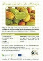 Frutos Silvestres do Alentejo - Figo da Índia e Medronho