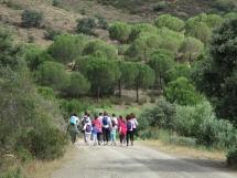 adpm-promove-percurso-pedestre-avistando-o-pomarao