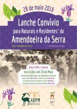 Plantas Aromáticas e Medicinais impulsionaram convívio na Amendoeira da Serra