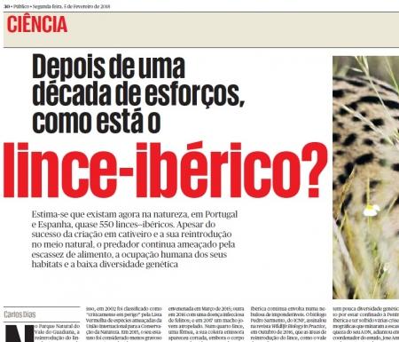 ADPM é notícia no jornal Público